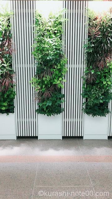 壁面緑化の壁