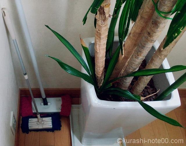 観葉植物の裏に置いた掃除道具