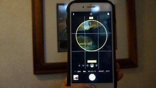 iPhone8Plusのカメラ|ポートレートがまるで眼レフ!Dropboxで取り込むときの注意点