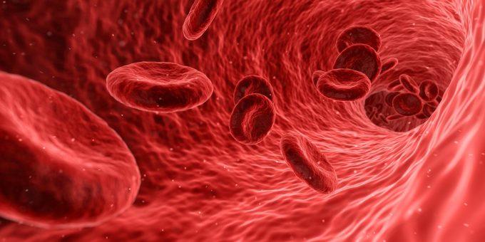 血栓血の流れ