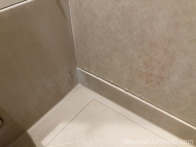 カビが生えた浴室