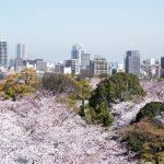 福岡の桜・お花見の穴場スポットとガイド集【2018年版】