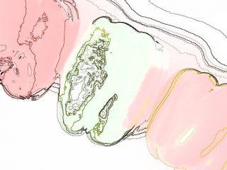 B3:カラー線画 アウトライン