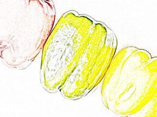 B3:カラー線画 色鉛筆