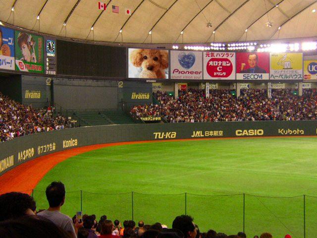 A1:フレーム枠(特殊)合成…東京ドーム