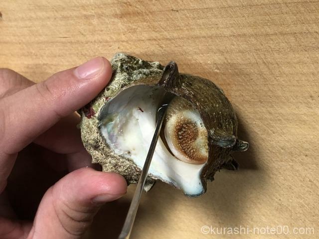 サザエの殻むき