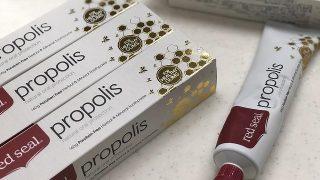 プロポリス「レッドシール」で歯石取り|コストコで買うべき歯磨き粉はコレ!